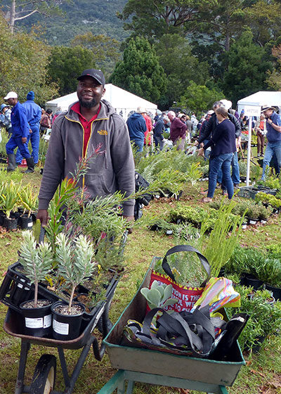 Kirstenbosch Plant Fair: Growing Indigenous and Cultivating Community