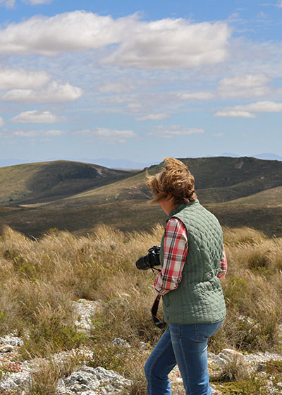 Growing a dream: A learning hub for Overberg Renosterveld