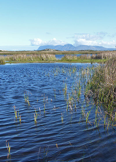 Conserving South Africa's wetlands