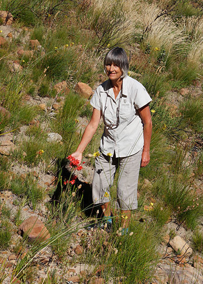 BotSoc Webinar: An introduction to ecological restoration