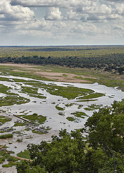 A Journey Through South Africa's Ecosystems